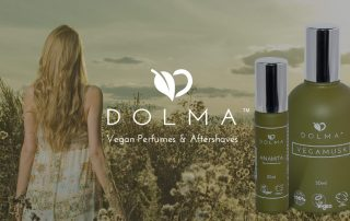 dolma rebrand ecommerce website development